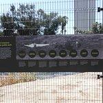 La Brea Tar Pits and Museum Foto