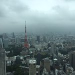 Great view of Yoyogi Park from our room.