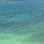 Foto de Islas del Rosario