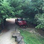 Foto di Hawk Valley Retreat & Cottages