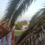 Foto de Globales Costa Tropical