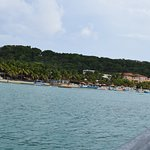 Photo of Bananarama Beach and Dive Resort