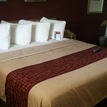Foto de Red Roof Inn Erie