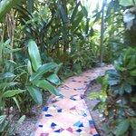 Photo of Jacaranda Hotel and Jungle Garden
