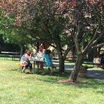Rappahannock Cellars lawn
