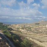 Tal-Massar Winery Foto