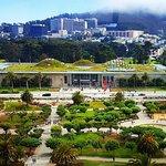 California Academy of Sciences Foto