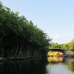 Banyan Tree Mayakoba Foto