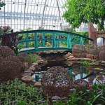Summer at Phipps Conservatory