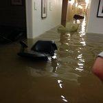 La Quinta Inn & Suites Baton Rouge Denham Springs Foto