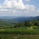 Foto Stone Mountain Vineyards