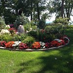 The view of the back year, backing onto Lake Erie. Beautiful gardens.