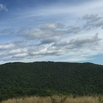 Foto di Cranmore Mountain Adventure Park