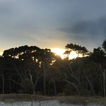 Hunting Island State Park Campground Picture