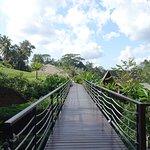 Bridge toward the lower level villa and the yoga and spa hall