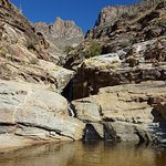 Sabino Canyon Foto