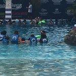 Photo of Dolphin Adventure by Vallarta Adventures