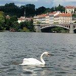 Photo de Prague Venice Boat Trip