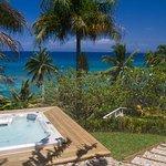 Foto de Taveuni Palms Resort