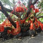 Foto de Elephant Trunk Hill (Xiangbishan)