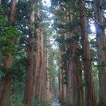 Togakushi Shrine Okusha Foto