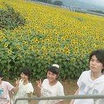Akeno Area Photo