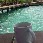 La parte del lago que está junto al deck es una alberca natural, hermoso