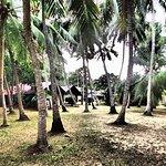 Ging Oya Lodge Photo
