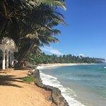 Palm Villa Foto