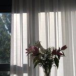 Lo que más me gustó, las flores naturales en la habitación :)