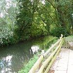 Vue sur le ruisseau