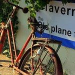 Φωτογραφία: The Old Plane Tree