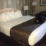Photo de BEST WESTERN The Inn at Buffalo Airport