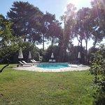 La bella piscina nella tranquilla pineta