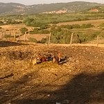 Foto de Agriturismo Poggio Mario