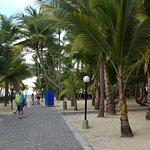 Foto di ClubHotel Riu Bambu
