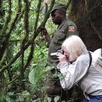 Foto de Bwindi Impenetrable National Park