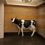 Hotel Entrance on Champs street and that cow steer at you the minute you come out the elevator