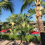 BEST WESTERN Naples Inn & Suites Foto
