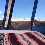 Assateague Island National Seashore Campground Foto