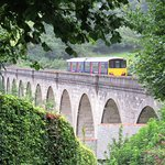 The Tamar Valley Line Photo