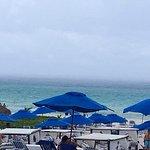 Photo of The Reef Playacar