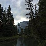 Fenland Trail Foto