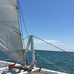 Gorgeous day for a sail with Lookout Cruises