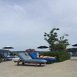 Harborside Hotel & Marina