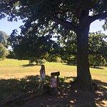 Photo de Aldenham Country Park