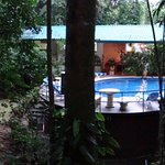 View from our Bungalow to the pool and dining area.