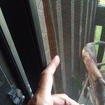 Unattached screen on door.
