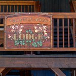 Truffle Pigs Bistro & Lounge Foto