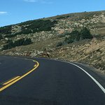 Photo de Trail Ridge Road